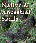 basic indigenous wilderness survival skills, Coast Live Oak School